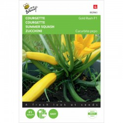 Courgette Gold Rush F1