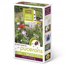 Prairie fleurie: Anti-pucerons - 3 M²