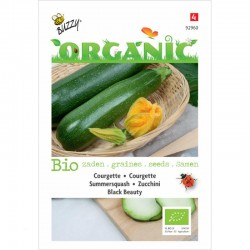 Courgette Black beauty Bio
