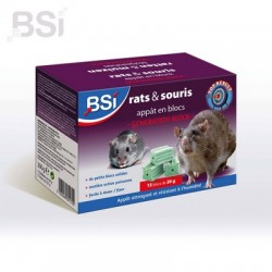 BSI Generation Block BE 300g (15x20g)